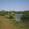 Thetford, Nunnery Lakes Nature Reserve of the British Trust for Ornithology, Lake 01