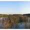 Panorama Lake Kadaga , Latvia (c) Sergey Barkans