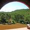 Parc eòlic des de Ca l'Andreu, serra de Rubió