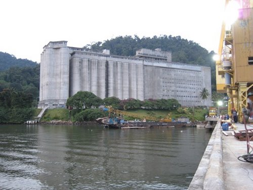 Malayan Flour Mills Berhad